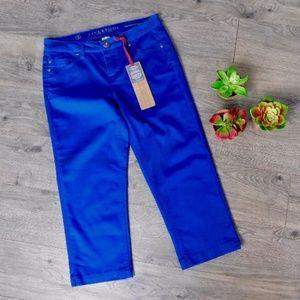 NWT ~ LIVERPOOL Sz 4 Michelle's Capri Royal Blue